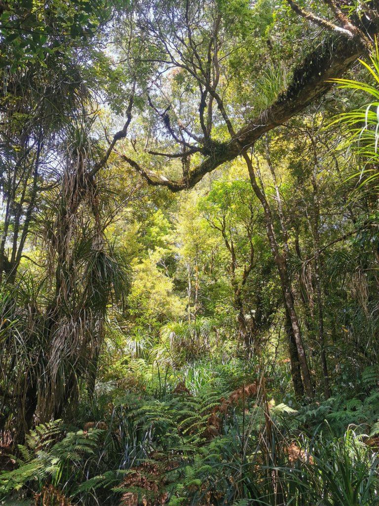 Trouson Kaui Park