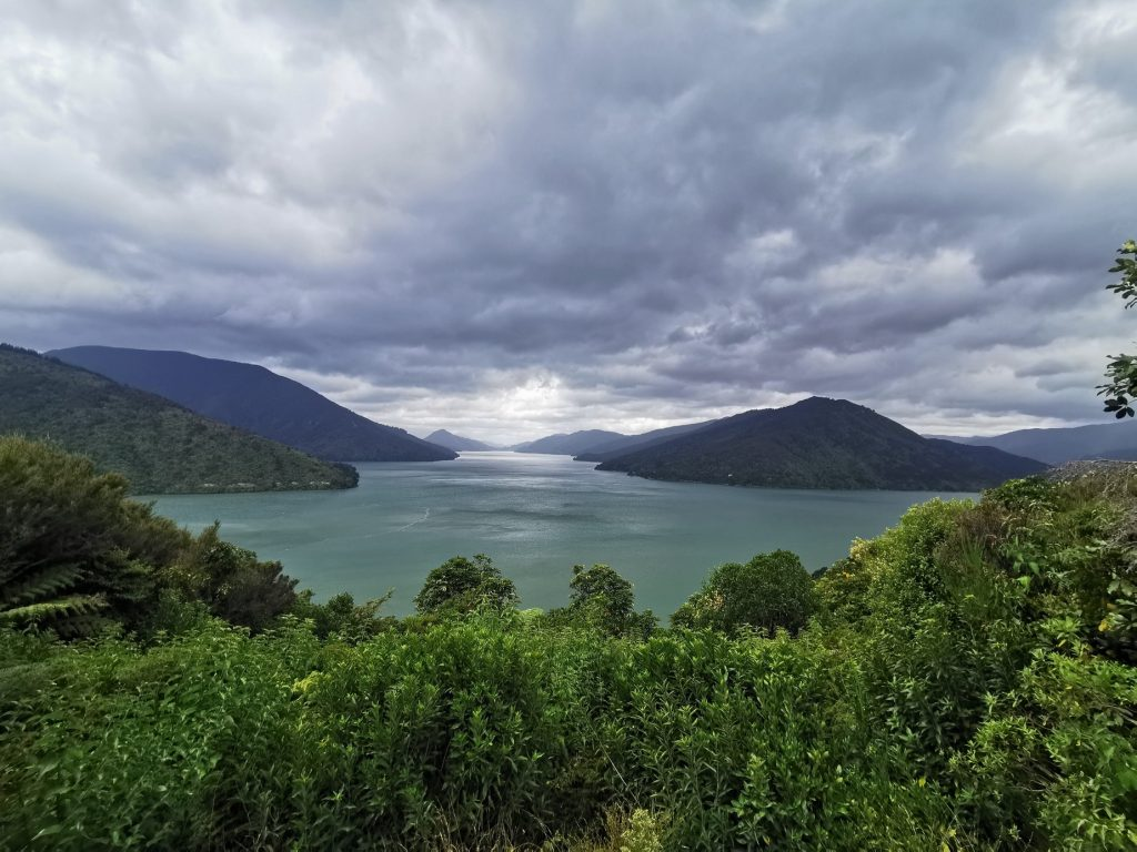 Havelock Lookout